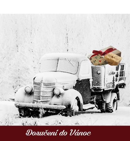 Vánoční doručování